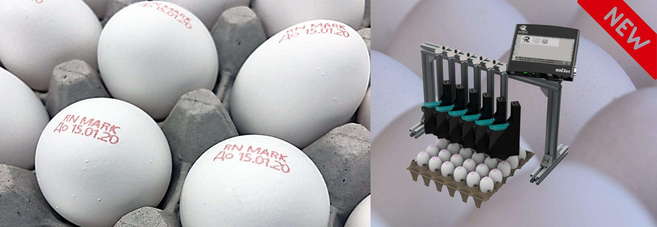 Egg-Printer-RNJET EP-6H- Marking-on-Eggs